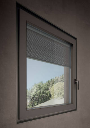 Shade Windows 2